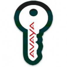 Лицензия на 1 IP абонентов, IP OFFICE R10+ AVAYA IP ENDPOINT 1 LIC:CU